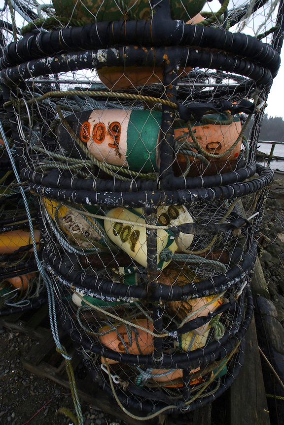 La Push Crab Nets, La Push, Quileute Reservation, Olympic Peninsula, Washington, US