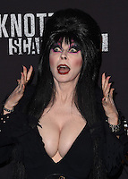 Elvira @ the 2016 Knott's Scary Farm black carpet held @ the Knott's Berry Farm park. September 30, 2016