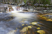 Harvard Brook in the White Mountains, New Hampshire USA during the spring months.