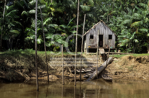 Rio Guama, Brazil. Riverside caboclo house built of timber on stilts. Para State.