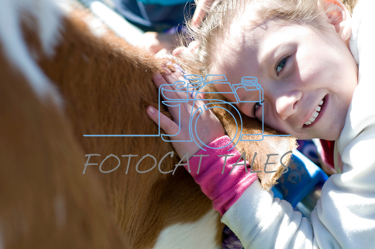 Adra Parrish, 6, of Fremont Elementary School in Carson City, Nev., participates in the cow plop fundraiser, where she was able to meet Buttercup, a Holstein Ayrshire mix.<br /> Photo by Candice Nyando