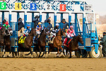 FEBRUARY 02, 2019 : Tax, ridden by Junior Alvarado, wins the Withers Stakes for 3-year olds at Aqueduct Racetrack on February  02, 2019 in S. Ozone Park, NY.  Sue Kawczynski/ESW/CSM