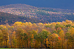 Fall foliage in New Haven, VT, USA