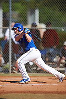 Illinois College Blueboys first baseman Brendan Stanfield (7) at bat during a game against the Edgewood Eagles on March 14, 2017 at Terry Park in Fort Myers, Florida.  Edgewood defeated Illinois College 11-2.  (Mike Janes/Four Seam Images)