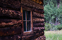 A rugged log cabin with a grove of aspen trees as background in the mountains west of Denver, Colorado.