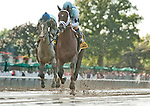 October 4, 2014: Daredevil, ridden by Javier Castellano, wins the Champagne Stakes, a Breeder's Cup Win and You're In Race, at Belmont Park in Elmont, New York. Scott Serio/ESW/CSM