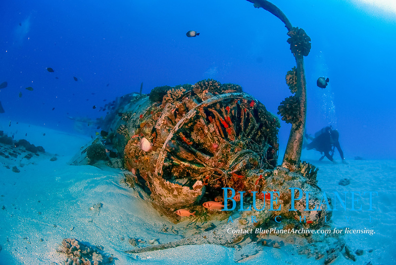 Close-up of and engine and propeller of a Corsair airplane wreck, taken at a depth of 100 feet/30 metres, off Oahu, Hawaii