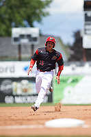 Batavia Muckdogs catcher Bryan De La Rosa (15) running the bases during a game against the West Virginia Black Bears on June 25, 2017 at Dwyer Stadium in Batavia, New York.  West Virginia defeated Batavia 6-4 in the completion of the game started on June 24th.  (Mike Janes/Four Seam Images)