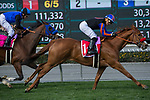 ARCADIA, CA  MARCH 18: #1 Madam Dancealot, ridden by Corey Nakatani, edges out #8 Midnight Crossing, ridden by Brice Blanc, and #9 Sassy Little Lila, ridden by Flavien Prat, to win the Santa Ana Stakes (Grade ll) (Photo by Casey Phillips/ Eclipse Sportswire/ Getty Images)