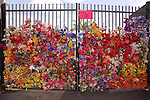 Street Flower Mural On Gate, Wynwood