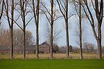Europa, DEU, Deutschland, Nordrhein Westfalen, Rheinland, Niederrhein, Wachtendonk, Typische Landschaft, Pappelbaeume, Bauernhaus, Natur, Umwelt, Landschaft, Jahreszeiten, Stimmungen, Landschaftsfotografie, Landschaften, Landschaftsphoto, Landschaftsphotographie, <br /> <br /> [Fuer die Nutzung gelten die jeweils gueltigen Allgemeinen Liefer-und Geschaeftsbedingungen. Nutzung nur gegen Verwendungsmeldung und Nachweis. Download der AGB unter http://www.image-box.com oder werden auf Anfrage zugesendet. Freigabe ist vorher erforderlich. Jede Nutzung des Fotos ist honorarpflichtig gemaess derzeit gueltiger MFM Liste - Kontakt, Uwe Schmid-Fotografie, Duisburg, Tel. (+49).2065.677997, ..archiv@image-box.com, www.image-box.com]
