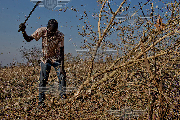 Kat Deng (19) cuts a thorny tree as he clears his plot of allocated land, before starting to built a shelter. The young man has to borrow the panga (machete) as the NFI (non-food items) kit that he received was incomplete. He says he worries about school in the settlement. He was in secondary form two, back in South Sudan. His father is a soldier and remained in South Sudan.