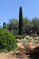 Parc de Sallecia in der Balagne, Korsika, Frankreich