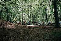 peloton through the forest<br /> <br /> 97th Brussels Cycling Classic (1.HC)<br /> 1 Day Race: Brussels > Brussels (201km)