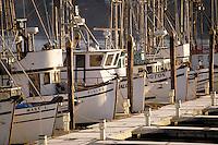 Fishing boats at dock. Port of Coos Bay Oregon USA.