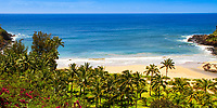 Beautiful, tropical landscape with palm trees in a green field, lush flowers, white sand beach, the turquoise Pacific Ocean of Kauai Island in Hawaii