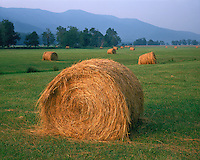 Evening light on hay rolls in Cades Cove; Great Smoky Mountains National Park, TN