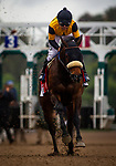 MAR 14: Hard Not To Love and Mike Smith race in the Beholder Mile in Arcadia, California on March 14, 2020. Evers/Eclipse Sportswire/CSM