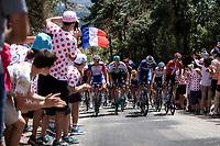 Kaspar Asgreen (DEN/Deceuninck Quick Step) and Danish National Champion Michael Morkov (DEN/Deceuninck Quick Step) leading the peloton up the Mur d'Aurec-sur-Loire (3.2km at 10.8%)<br /> <br /> Stage 9: Saint-Étienne to Brioude (170km)<br /> 106th Tour de France 2019 (2.UWT)<br /> <br /> ©kramon