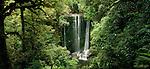 Korokoro Waterfall in the Te Urewera National Park. Hawke's Bay Region of New Zealand.