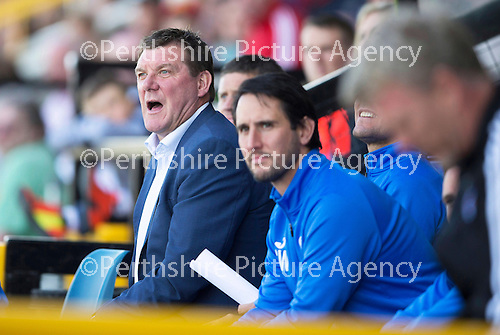 St Johnstone v Real Sociadad...12.07.15  Bayview, Methil (Home of East Fife FC)<br /> Saints boss Tommy Wright shouts instructions<br /> Picture by Graeme Hart.<br /> Copyright Perthshire Picture Agency<br /> Tel: 01738 623350  Mobile: 07990 594431
