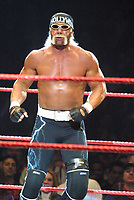 Hulk Hogan 2002                                                                              By John Barrett/PHOTOlink