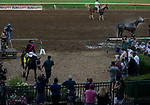 Art Collector, ridden by jockey Brian Hernandez Jr., enter the winners circle after winning the Runhappy Ellis Park Derby's 10th race for a $200,000 purse at Ellis Park in Henderson, Ky., Sunday afternoon, Aug. 9, 2020. Art Collector won the race handily. The race is a qualifier for the upcoming Sept. 5, 2020, Kentucky Derby, with 85 points (50-20-10-5) up for grabs.