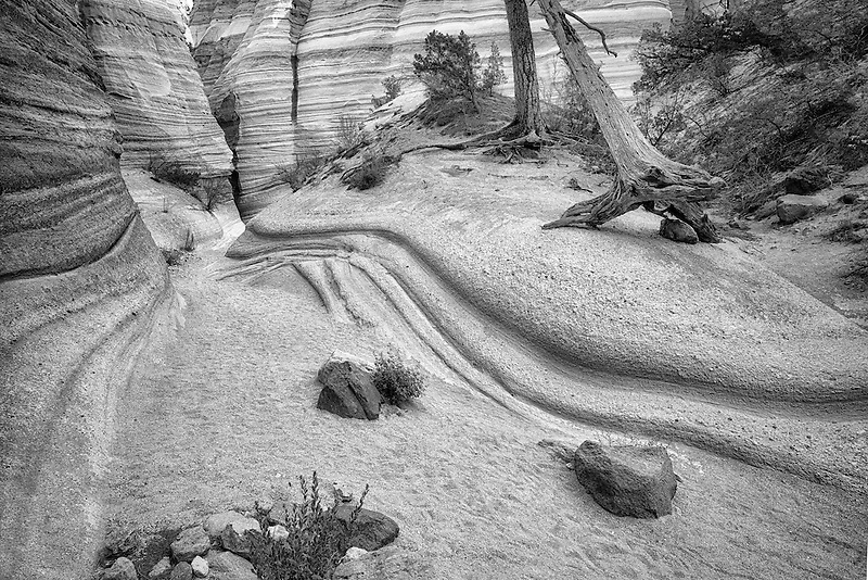 Streambed  and rock formations in Tent Rocks National Monument.  Kasha-Katuwe,New Mexico,trail,trails,pathway,pathways,path,paths,passage, passages,walk,walkway,walkways,footpath,footpaths, route,way,course,nature,