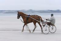 Europe/France/Bretagne/29/Finistère/Santec: Entrainement des trotteurs sur la plage