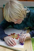 Kinder basteln ein Fensterbild mit Blüten, Junge klebt zuvor gepresste Blüten auf ein Pergamentpapier