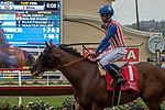 DEL MAR, CA. AUGUST 12:  #1 Run Away ridden by Flavien Prat, appears to be looking at the order of finish after he wins the Best Pal Stakes (Grade ll) on August 12, 2017, at Del Mar Thoroughbred Club in Del Mar, CA.(Photo by Casey Phillips/Eclipse Sportswire/Getty )