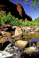 Beautiful fresh clean water courses through Waimea Canyon, a spectacular hike on the island of Kauai.