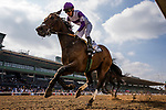 ARCADIA, CA - FEBRUARY 10: Mopotism and Mario Gutierrez at the Santa Maria Stakes at Santa Anita Park on February 10, 2018 in Arcadia, California. (Photo by Alex Evers/Eclipse Sportswire/Getty Images)