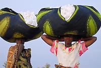 Tanzania, organic cotton project biore of swiss yarn trader Remei AG in Meatu district, women carry harvested bio cotton on the head to the village / Tansania , biore Biobaumwolle Projekt der Schweizer Remei AG in Meatu, Frauen tragen geerntete Biobaumwolle auf dem Kopf ins Dorf