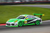 #16 ACI Motorsports, Porsche 991 / 2014, GT3G: Curt Swearingin