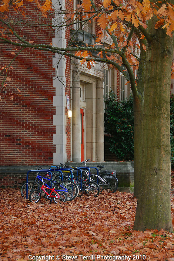 USA, Oregon, Bicycles lined up outside school with autumn leaves in Portland