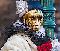Roses<br /> Carnival of Venice<br /> Italy