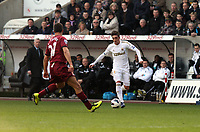 Saturday 2nd March 2013<br /> Pictured: (L-R) Steven Taylor, Pablo Hernandez.<br /> Re: Barclays Premier Leaguel, Swansea  v Newcastle at the Liberty Stadium in Swansea.
