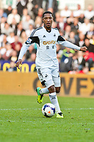 Saturday 19 October 2013 Pictured: Jonathan de Guzman<br /> Re: Barclays Premier League Swansea City vSunderland at the Liberty Stadium, Swansea, Wales