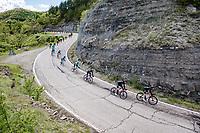 Team Ineos Grenadiers with Maglia Rosa / Pink Jersey / GC Leader Egan Bernal (COL/Ineos Grenadiers) descending the Passo Della Calla<br /> <br /> 104th Giro d'Italia 2021 (2.UWT)<br /> Stage 12 from Siena to Bagno di Romagna (212km)<br /> <br /> ©kramon