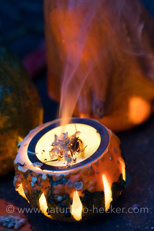 Räuchern in freier Natur, Räuchern im Herbst. Zierkürbis, Kürbis wurde ausgehöhlt und mit Lüftungsschlitzen verziert, darin steht ein Teelicht, auf einem darüber liegenden Drahtsieb werden Kräuter und Fichtenharz, Harz durch die Kerzenflamme verräuchert. Räuchern, Räucherritual, Räuchern mit Kräutern, Kräuter verräuchern, Wildkräuter, Duftkräuter, Duft, Smoking with herbs, wild herbs, aromatic herbs, fumigate, cure, censer, incense burner, perfume burner