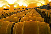 The barrel aging cellar at Albet i Noya in Penedes (Catalonia, Spain) near Barcelona. Albet i Noya is an organic producer of wine. The wine is aged in the underground cellar before being bottled. Penedes Catalonia Catalunya Spain Europe
