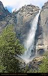 Upper Yosemite Fall in Spring, Sentinel Meadow, Yosemite National Park