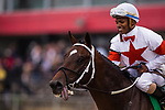 BALTIMORE, MD - MAY 19: Ricardo Santana Jr.and Mitole #5 after winning the Chick Lang Stakes at Pimlico Racecourse on May 19, 2018 in Baltimore, Maryland. (Photo by Alex Evers/Eclipse Sportswire/Getty Images)