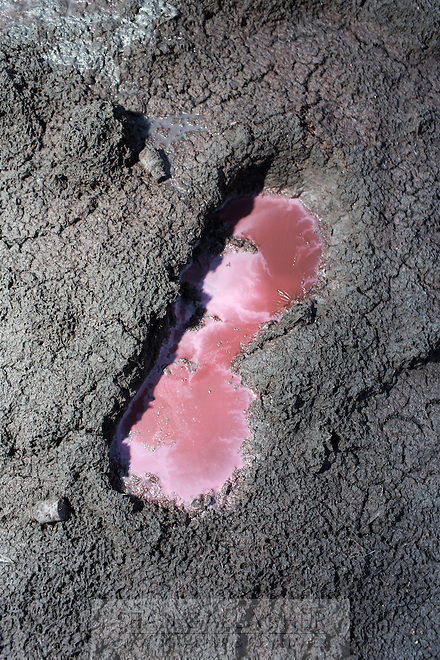 A small pool of red water sits in a footprint in near a waste water channel in the town of Kanpur, in northern India. The water is laced with toxins and is highly acidic, giving it its distinct colour. The city is notorious for having some of the country's worst water pollution which is created by the local leathery tannery industry.