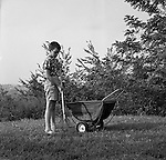 Bethel Park PA: Members of both Brady Stewart and Brady Stewart Jr.'s families were occasionally used as models for advertising products. And the pay was way below minimum wage!<br /> Brady Stewart III raking grass in the backyard and using a Disson Leaf Wheelbarrow.