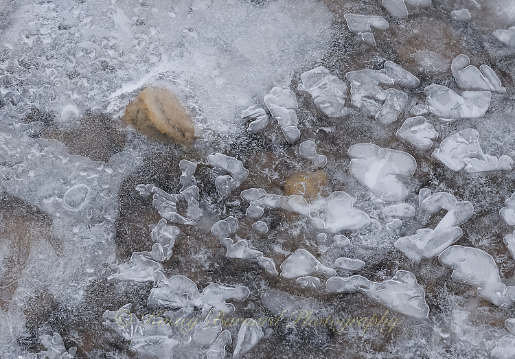 """""""RIVER ICE-11<br /> <br /> Ice formations along a river's edge creating intricate and beautiful designs"""