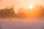 Jan. 19, 2015; Ground fog on the athletic fields near the Bookstore. (Photo by Matt Cashore/University of Notre Dame)