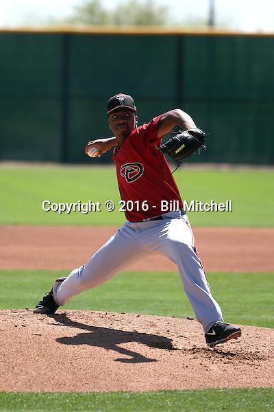 Tyler Mark - Arizona Diamondbacks 2016 spring training (Bill Mitchell)
