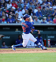 Trent Giambrone - Chicago Cubs 2019 spring training (Bill Mitchell)